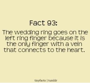 Pinterest Fact